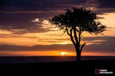 east africa 2014-33